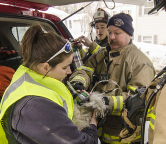 Dog received oxygen from AMR rescuer.