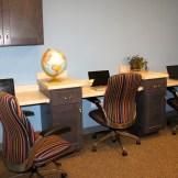 Study area.