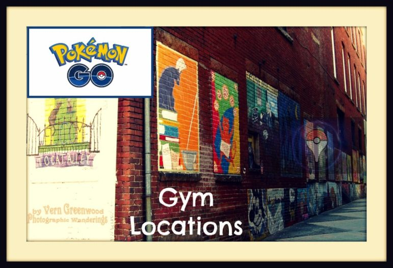 cats alley dt gym