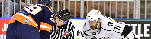 Image result for photo of cory ward, echl manchester monarchs