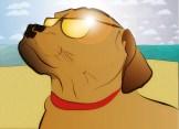 July 2013 - Lifeguard Bueller, Baking in the Sun