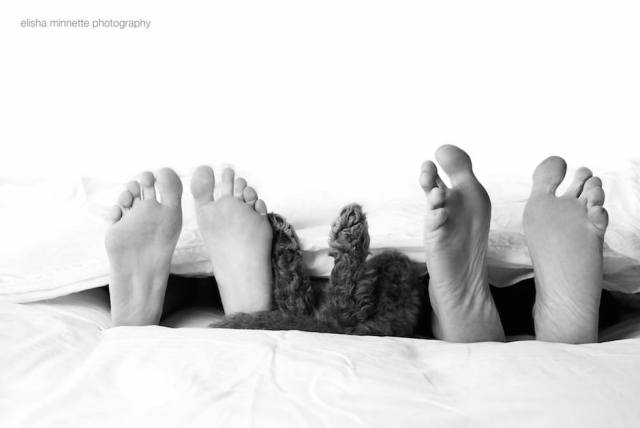 newborn-shooting-puppy-humphry-bed-feet