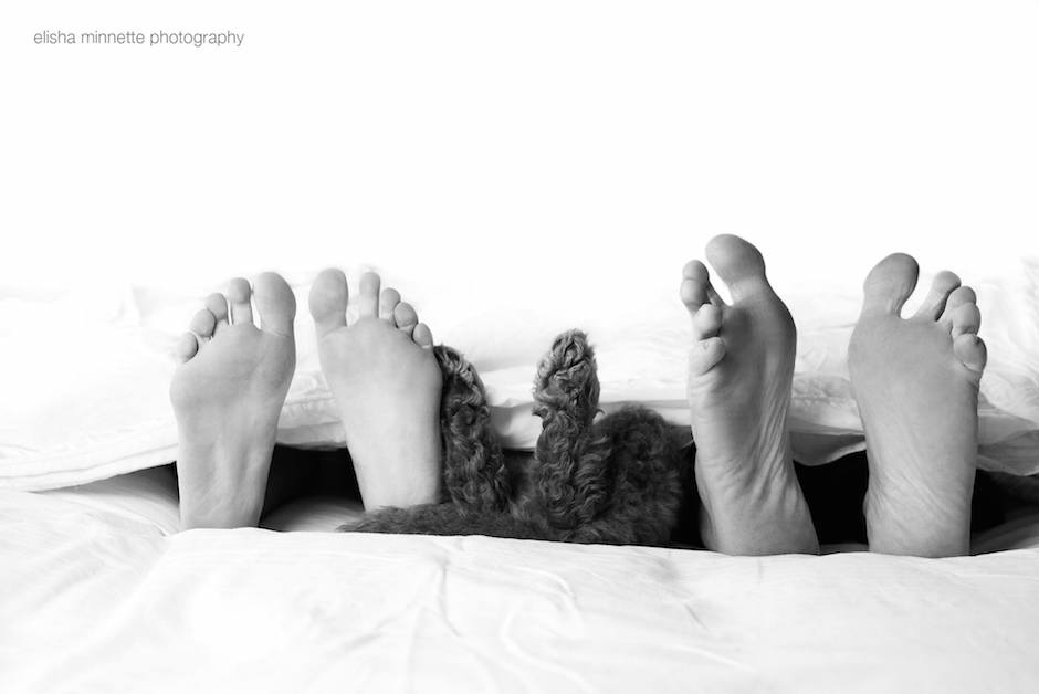 newborn-shooting-puppy-humphry-bed-feet