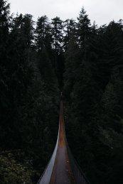 Capilano Suspension Bridge Park Seilbrücke 136 Meter 70 Meter Höhe Wald Thrill Adventure Canyon Capilano River grün Holz Schwingen Vancouver Kanada