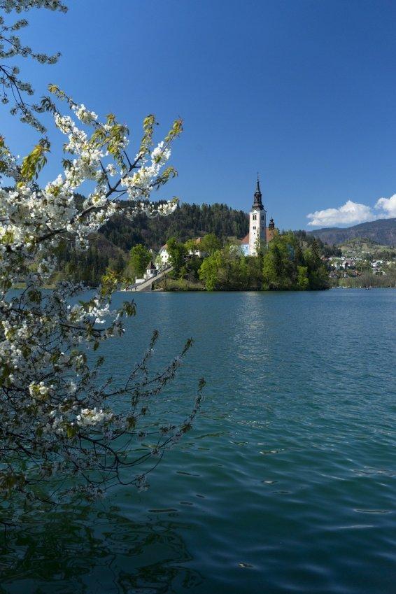 Bled Blejski Otok Schloss See