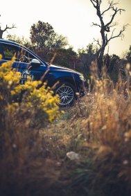 Audi SQ5 Natur Südafrika Offroad