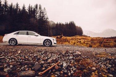 Cadillac Reh Geweih Berge Regen