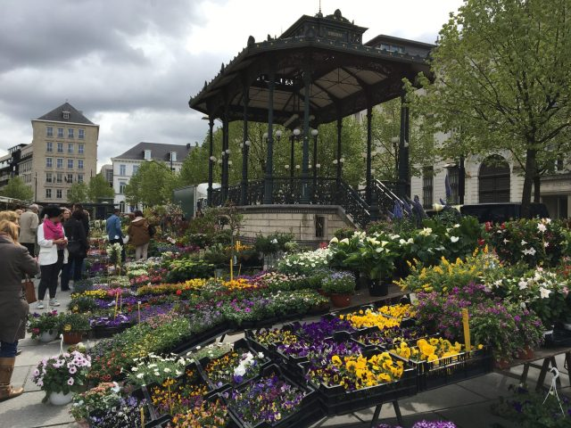 Flower market in Ghent on Springtime in Holland tour 2017