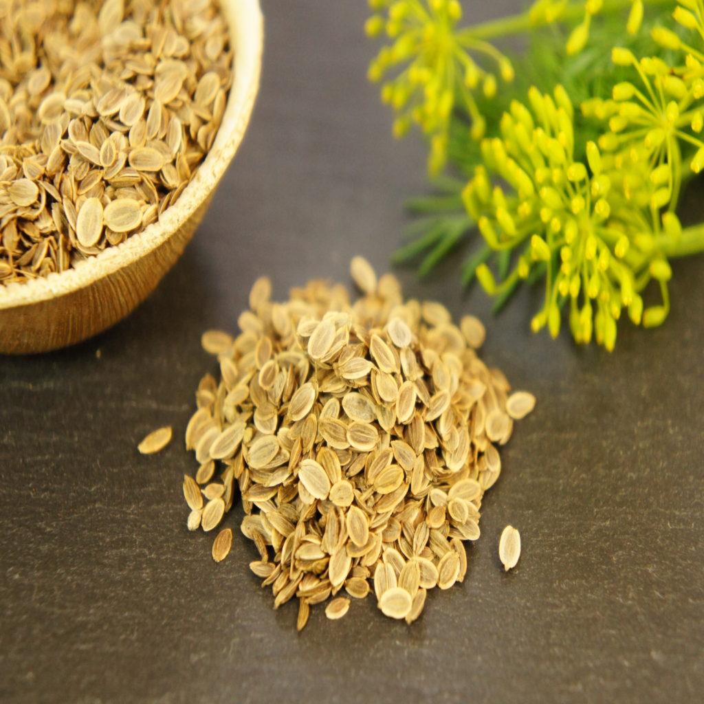 Resultado de imagen de dill seeds
