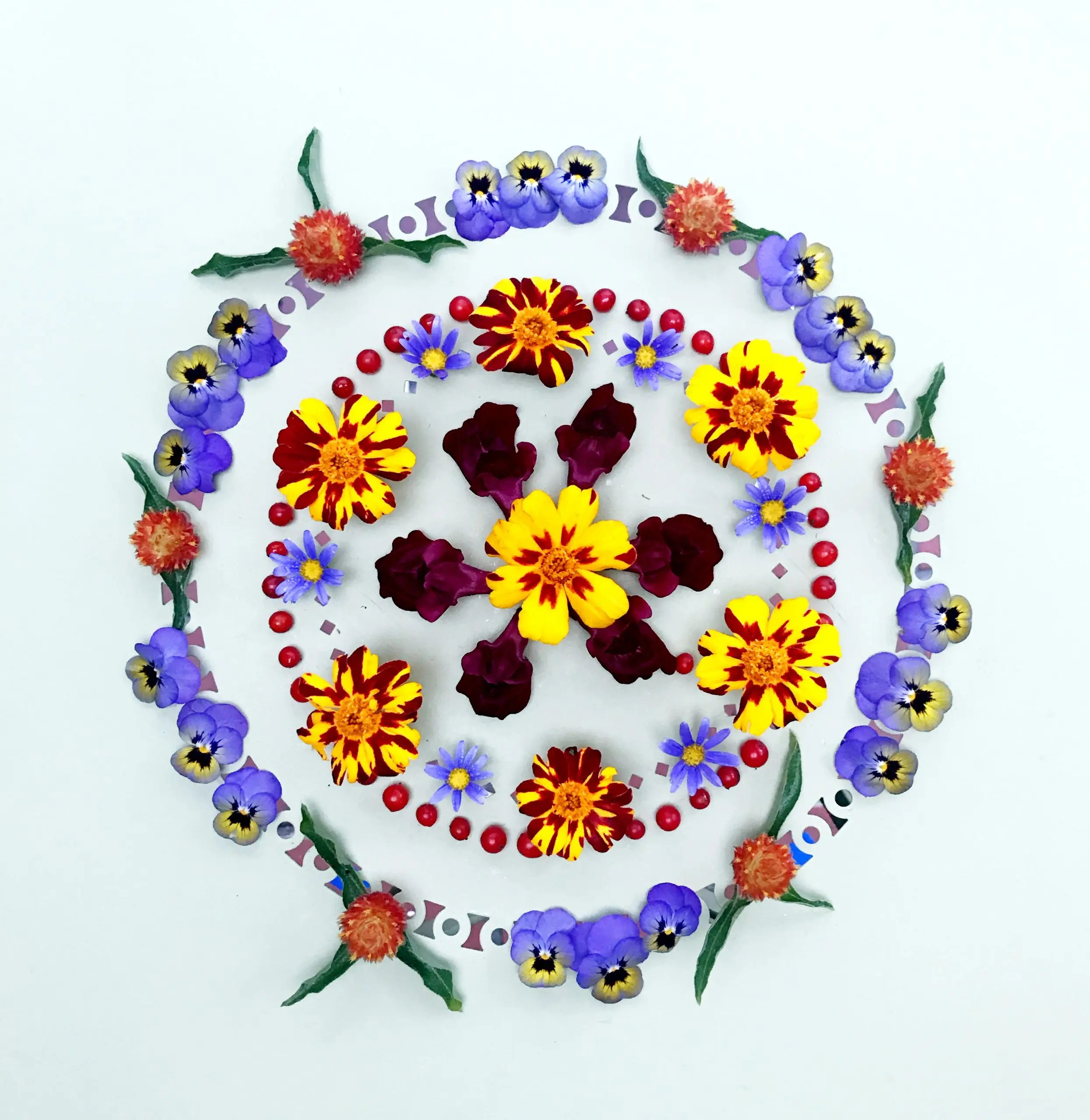Read more about the article Time-lapse video of a botanical mandala creation