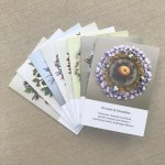 Series 1 Botanical Mandala Greeting Cards