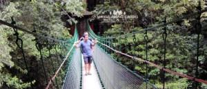 canopy trail cibodas