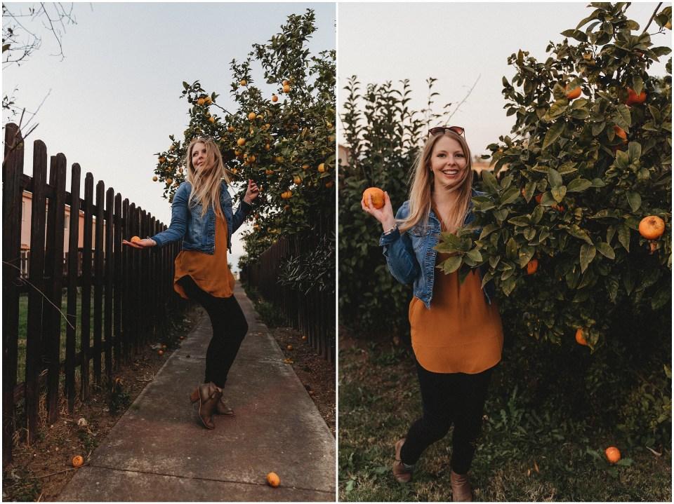 orange fruit sicily
