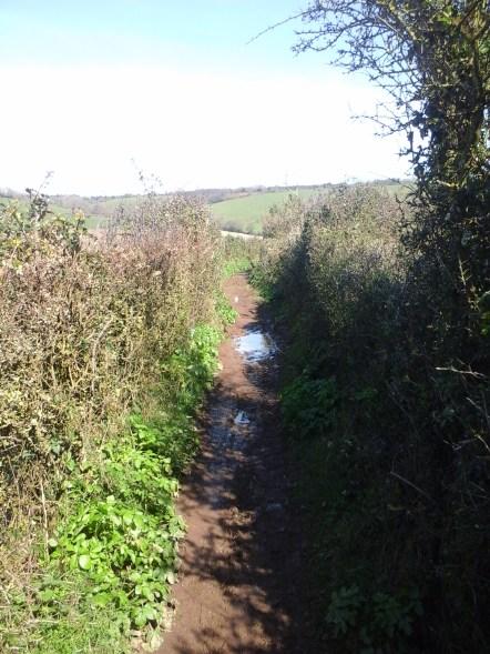 Still some mud to cross, despite the sun