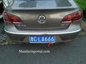 666 In Chinese Grey VW License Plate