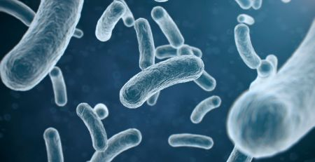 Norway water contamination Patient dies and thousands unwell after E.Coli found - The Mandatory Training Group UK -