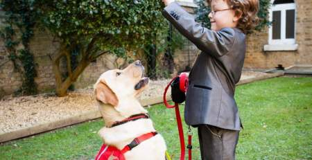 Diabetes-detection dogs help patients avoid blood sugar crashes - The Mandatory Group UK -
