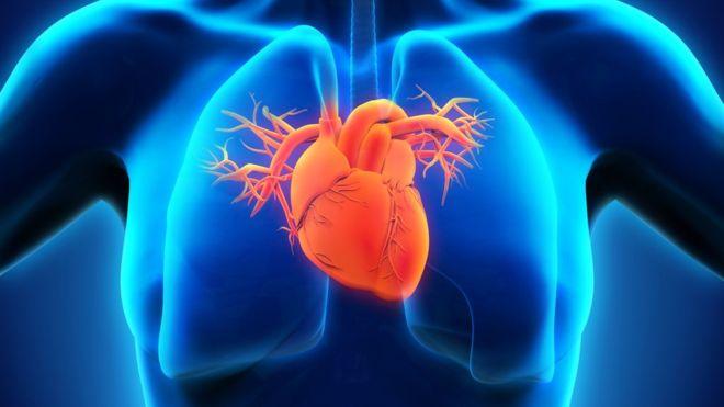 Heart doctors 'held back stent death data' - MTG UK 1