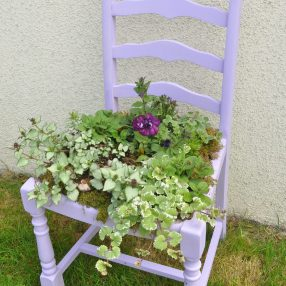 Purple Plant Chair