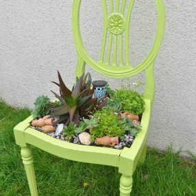 Succulent Plant Chair