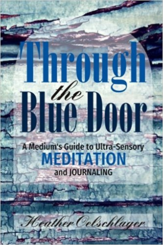 Through the Blue Door book