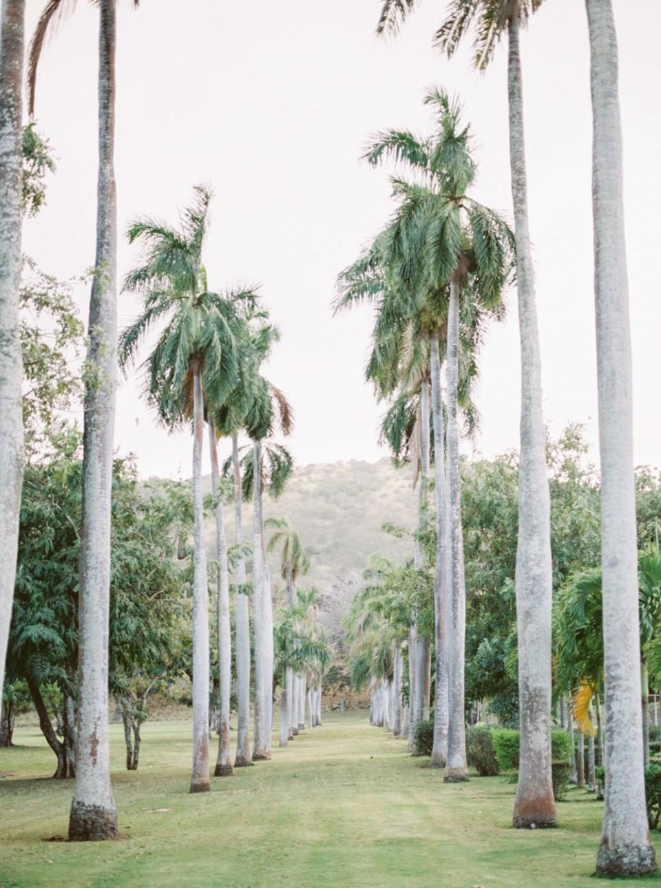 Dillingham Ranch Wedding At Sunset