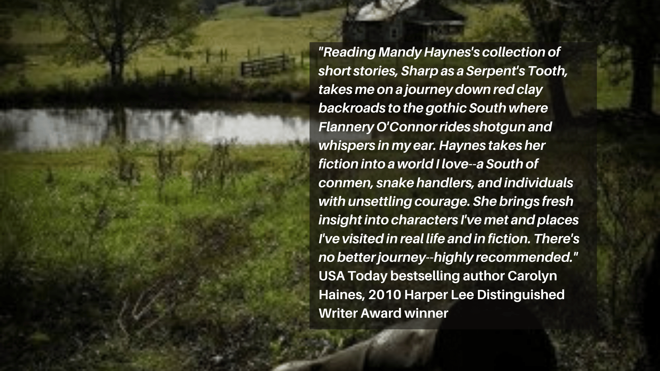 Mandy Haynes, author of literary fiction with a southern drawl