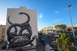 ROA Casablanca street art © Sbagha Bagha 2018
