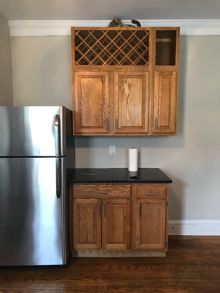 Kitchen Cabinets and Fridge