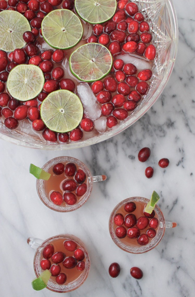Cranberry and Ginger Ale Party Punch