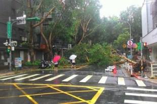 大颱風天新秘也要使命必達~停電沒燈怎麼做造型?