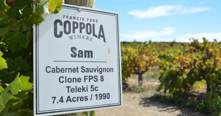 Four must-visit wineries in Sonoma