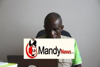 fisher chiyanike - Zimbabwe United Nations Vice President Arrested Over Sexual Harassment (Photos)