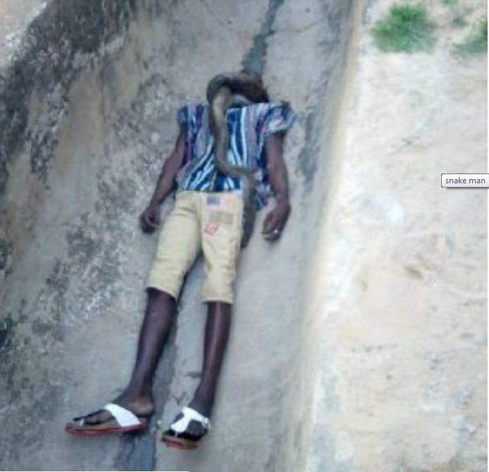 screenshot 1 - Man Strangled To Death By His Pet Snake In Ghana (Photos,video)