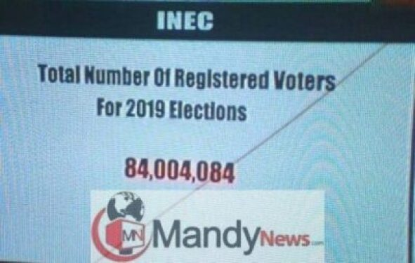 8484127_inec_jpeg8d6661832e332cae902f5c34f1095fa0 See The Statistics Of Registered Voters For 2019 Elections (Photo)