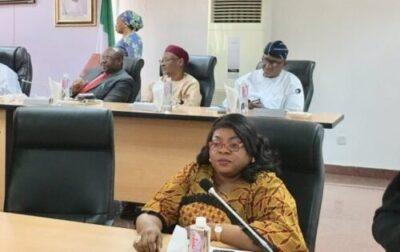 8738604 com2 jpeg0c26e013537746223bfb735dde68fdf31713081946 - Commonwealth Election Observers Land In Nigeria, Meet INEC (Photos)
