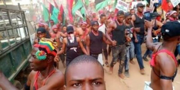8738788_3_jpg799bad5a3b514f096e69bbc4a7896cd91865296668 Photos From IPOB Election Boycott Campaign In Anambra Today