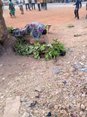 8829475 fbimg1550768685686 jpegcfab7204318f1bfb58a114a51c72eb97 - Fulani Herdsmen Attack A Market In Guma, Benue, Kill 2 (Photos)