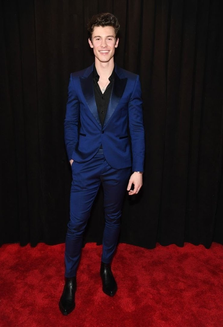 shawn-mendes-attends-the-61st-annual-grammy-awards-at-news-photo-1097515164-15498434841743664475 All Grammys 2019 Red Carpet Celebrity Dresses & Looks (Photos)