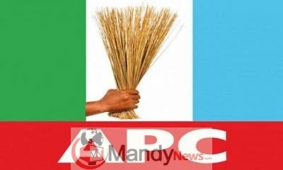 images-6-2 APC In Imo Doesn't Have A Governorship Candidate - Imo APC Chairman (Video)