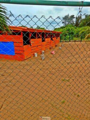 1555017632041 768x1024 - Collins WeGlobe: My Visit To Tarkwa Bay Beach In Lagos, Nigeria (Photos)