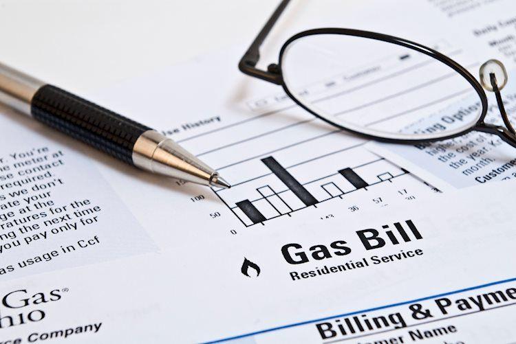 El almacenamiento de gas natural de la EIA aumenta en 81 Bcf frente a los 94 Bcf esperados