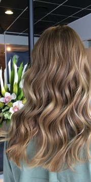 beige brunette hair color