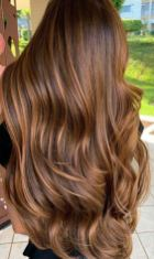 amazing chestnut brown hair color