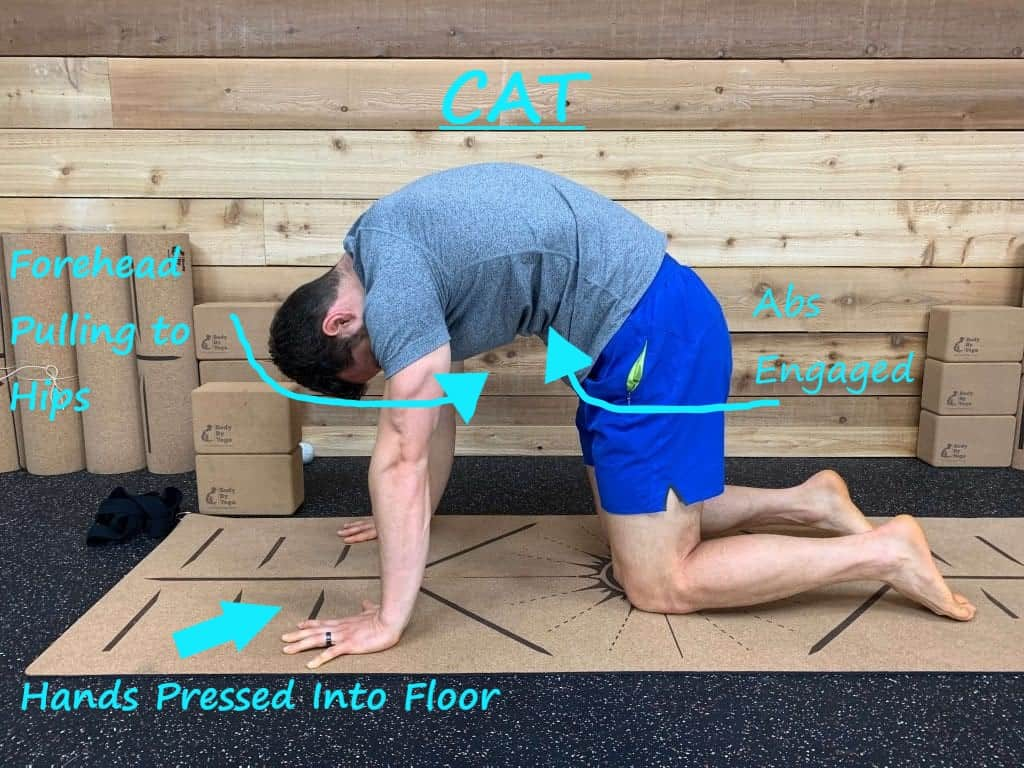 How to Get Rid of Tech Neck with Yoga - Cat