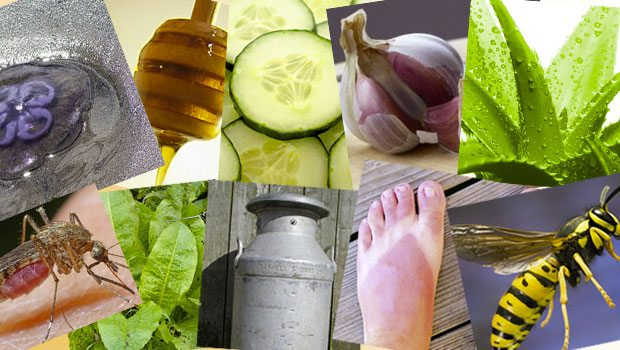 Summer-Woes_10-Natural-Remedies_The-Utter-Gutter_Infographic_TUG