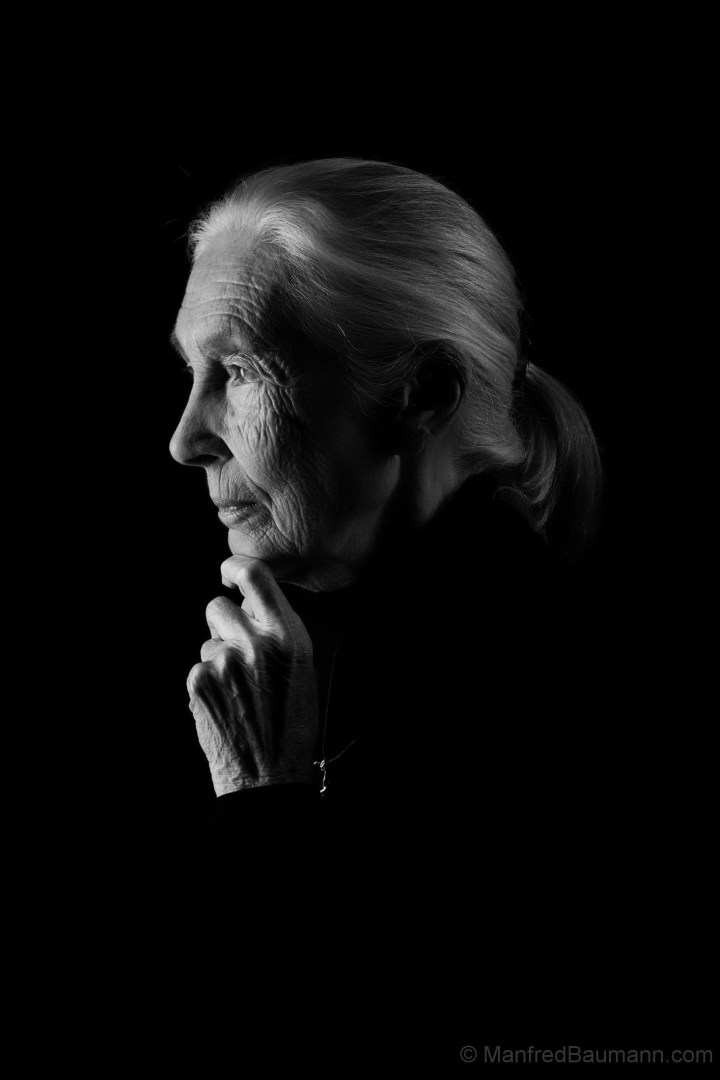 Jane Goodall by Manfred Baumann 2019 66