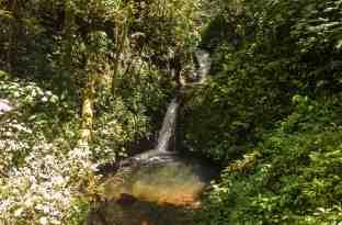 wasserfall- Monteverde-1