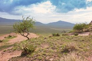 Ngorongoro Area bei Nasera Rock-v oben 2017-2-2