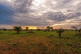 Serengeti Zeltsafari Blick ins Land 2017-2-2